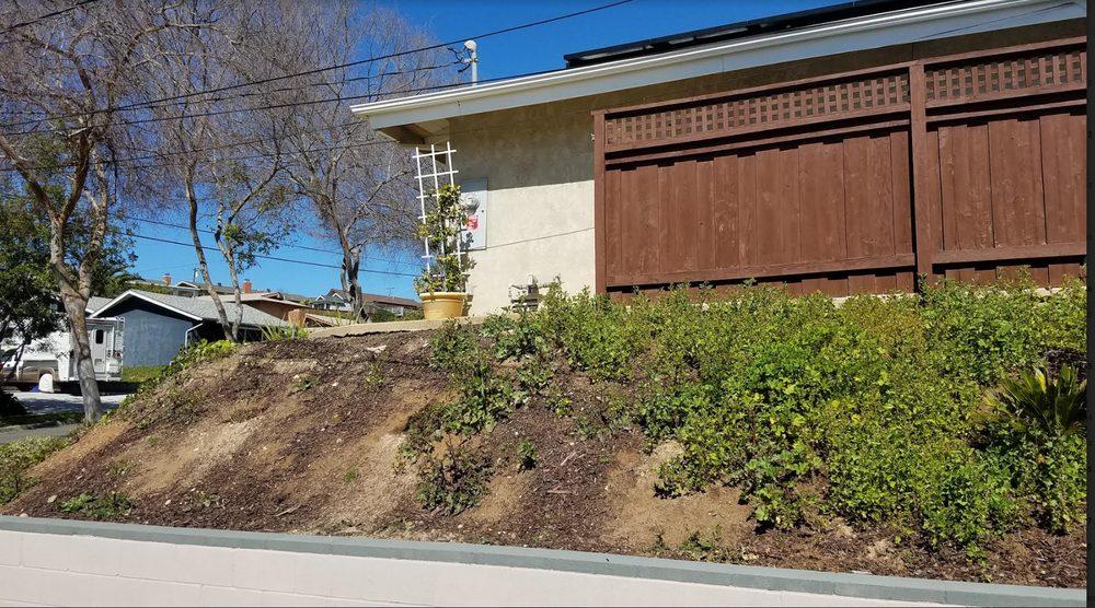 Burgio Landscape Services: Alpine, CA