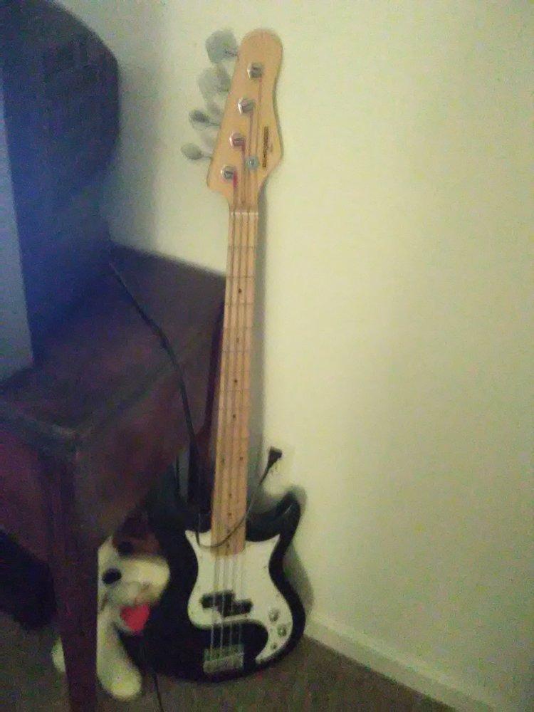 The Guitar Gallery: 9401 Lee Hwy, Fairfax, VA