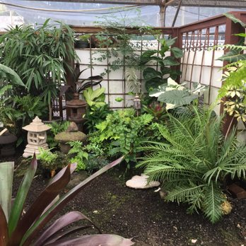 Photo Of Kauai Nursery Landscaping Lihue Hi United States