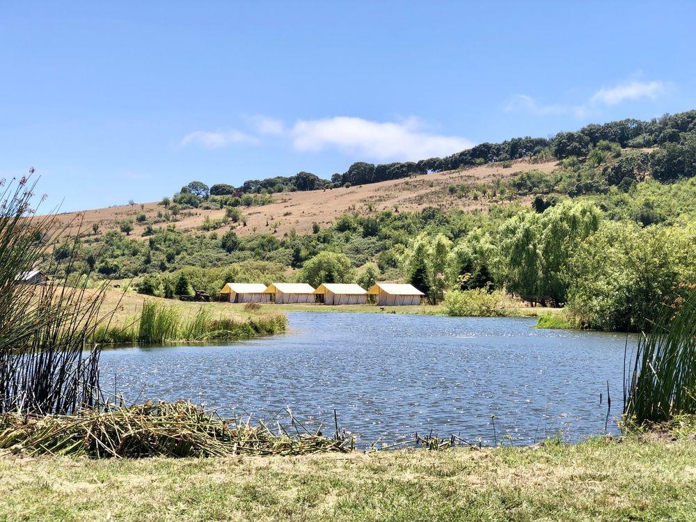 Duckworth Family Farm: 2950 Canfield Rd, Sebastopol, CA