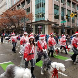 Macy S Thanksgiving Day Parade 68 Photos Festivals