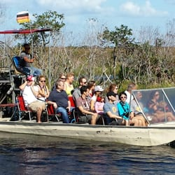 Buffalo Tigers Fl Everglades Airboat Tours 553 Photos 323