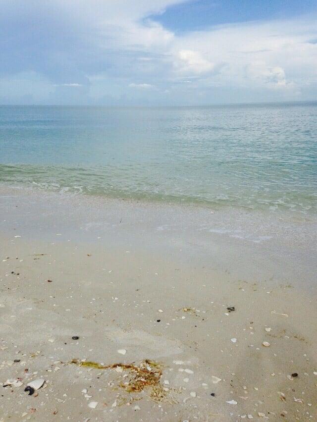 Clam Pass Beach Park Rentals