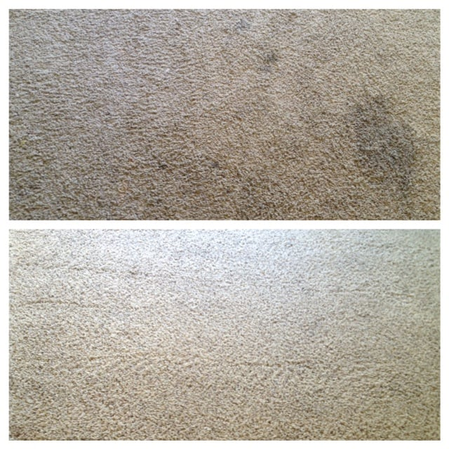 PurElements Carpet Cleaning Specialists: 6257 W 9600th N, Highland Utah, UT