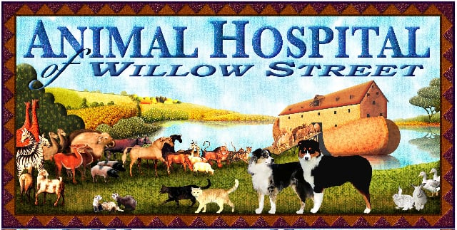Animal Hospital of Willow Street