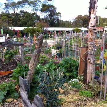 Veg Out Community Gardens Community Gardens Cnr Shakespeare Grove Chaucer St St Kilda