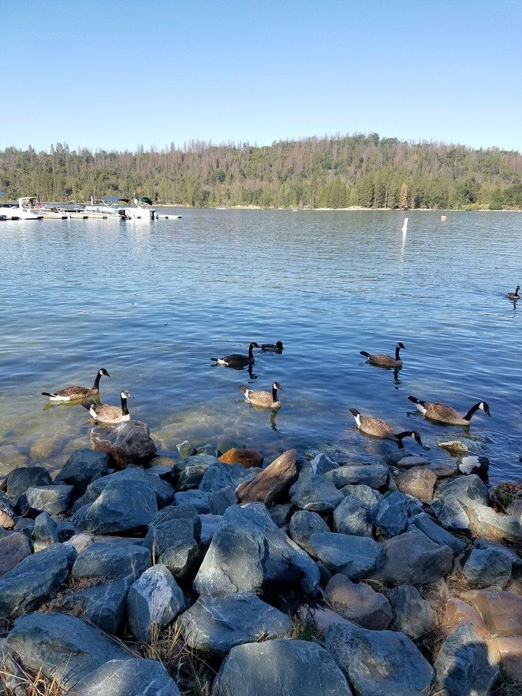 Wishon Campground: 32588 Hwy 190 Tule River, Springville, CA