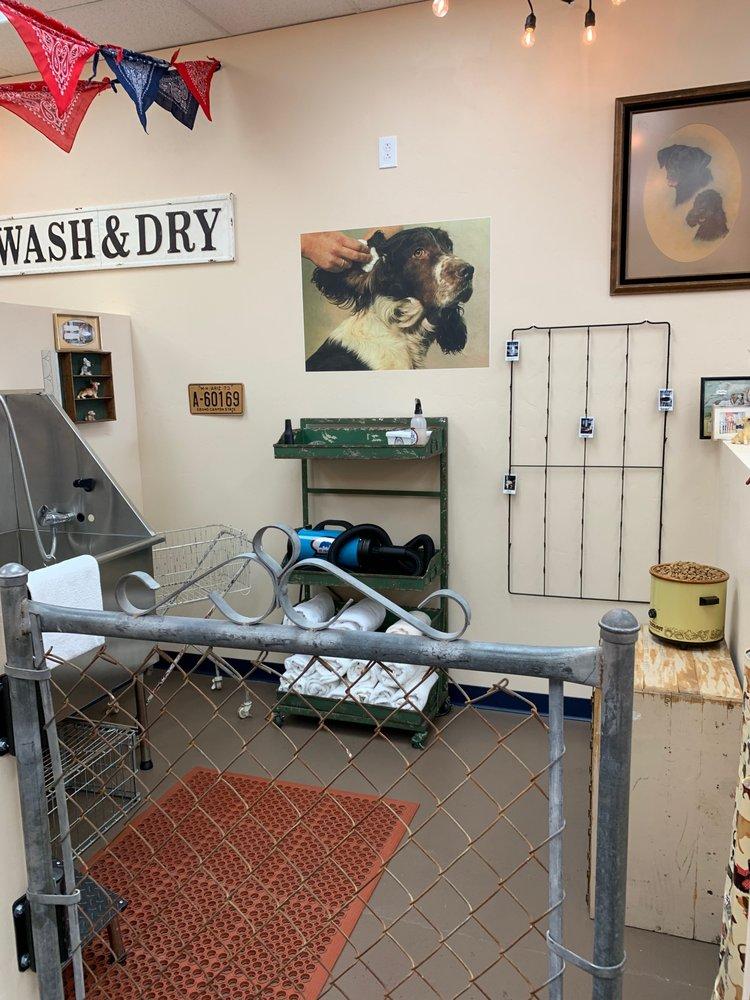 Rosie's Barkét OV DIY Dogwash