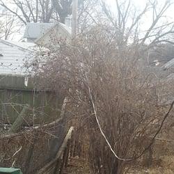 Walkup Tree Service Snow Removal 9121 Spaulding St