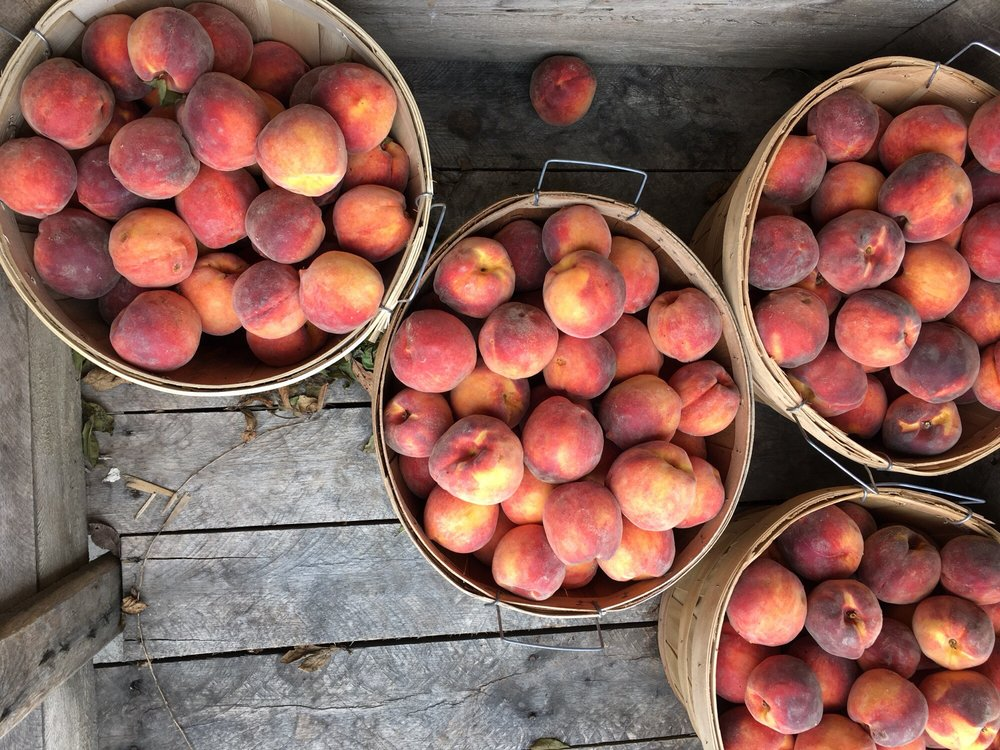 Overhiser Orchards: 6405 109th Ave, South Haven, MI
