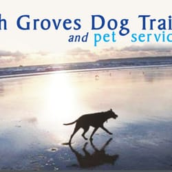 Sarah Groves Dog Training And Pet Services Port Talbot