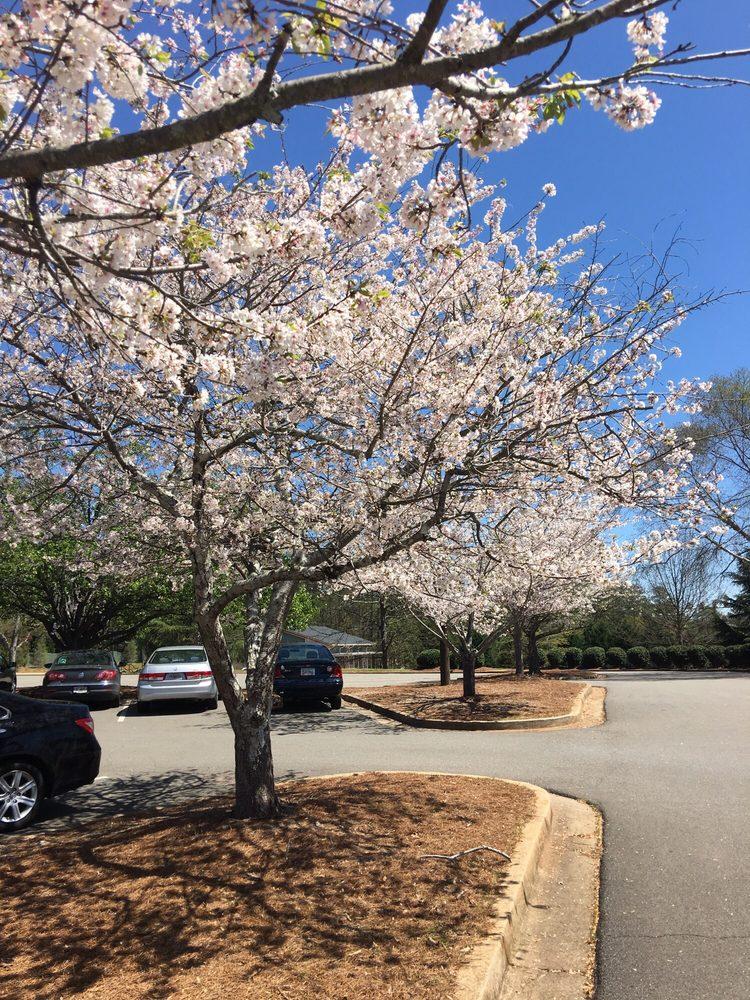 Waller Park Extension: 160 Dobbs Dr, Roswell, GA
