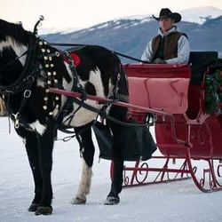 2 below zero dinner sleigh rides 27 photos 43 reviews american