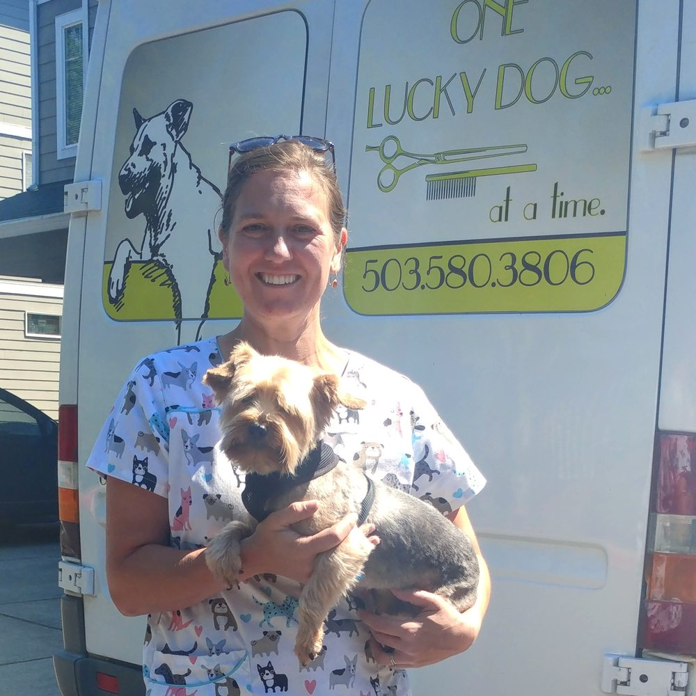One Lucky Dog Mobile Grooming: Happy Valley, OR