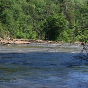 Sweetwater Creek State Park - 527 Photos & 138 Reviews - Parks