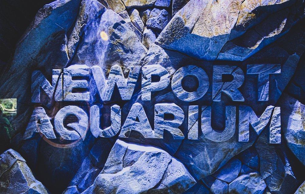 Newport Aquarium: 1 Dave Cowens Dr, Newport, KY