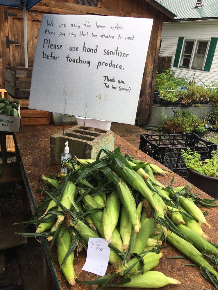 Blooming Valley Farms: 26582 State Hwy 77, Saegertown, PA