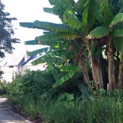 Jardin de la retraite 25 photos botanical gardens for Jardin quimper