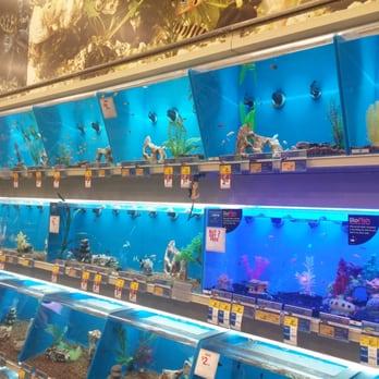 Petsmart 63 photos 59 reviews pet stores 2140 n for Fish store las vegas