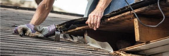Peterson Roofing: 2905 Rte 16 N, Olean, NY