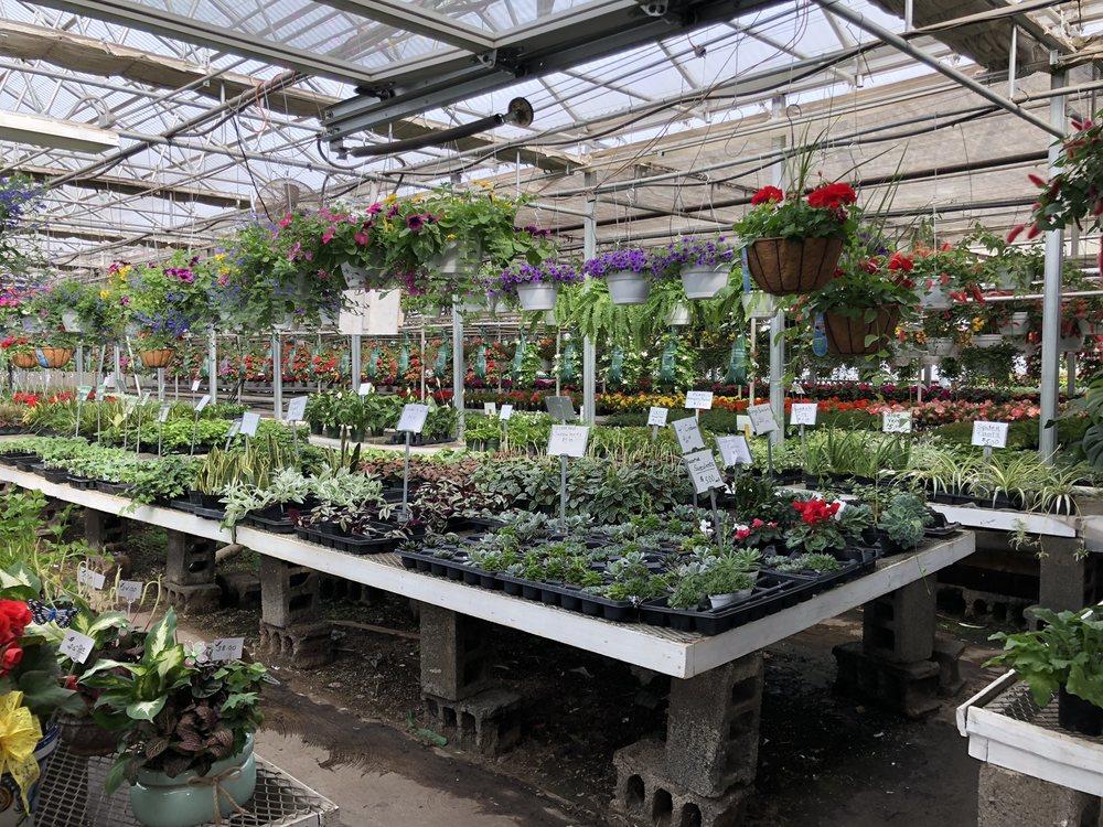 Larry Omalia's Greenhouses: 1125 N River St, Plains, PA
