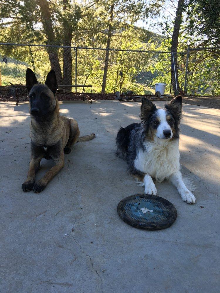 Doerner Investigations: Agoura Hills, CA