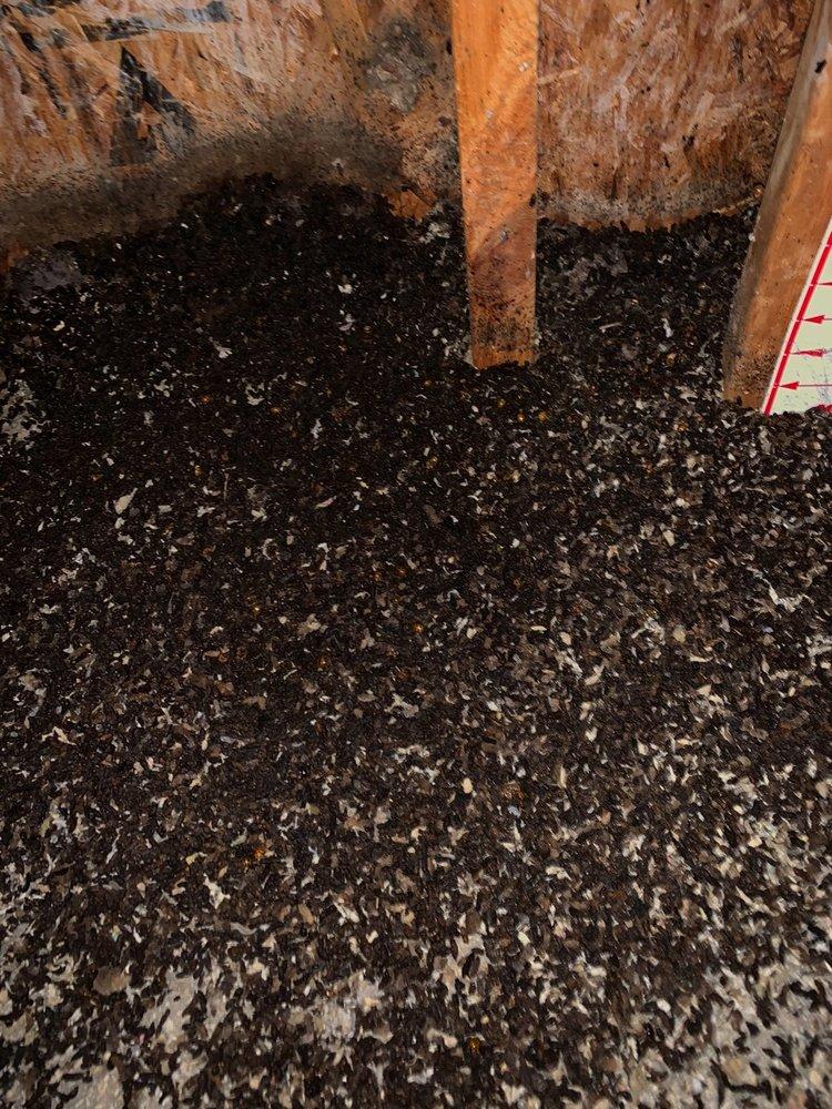Michigan Bat Removal: 44878 Heydenreich Rd, Clinton Twp, MI