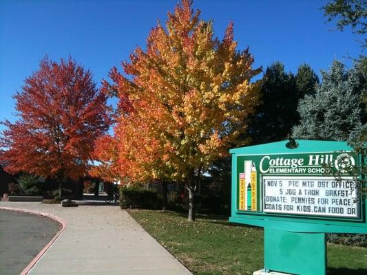 Cottage Hill School - Elementary Schools - Grass Valley ...