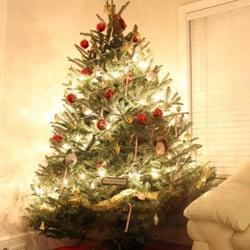photo of five star christmas trees salt lake city ut united states
