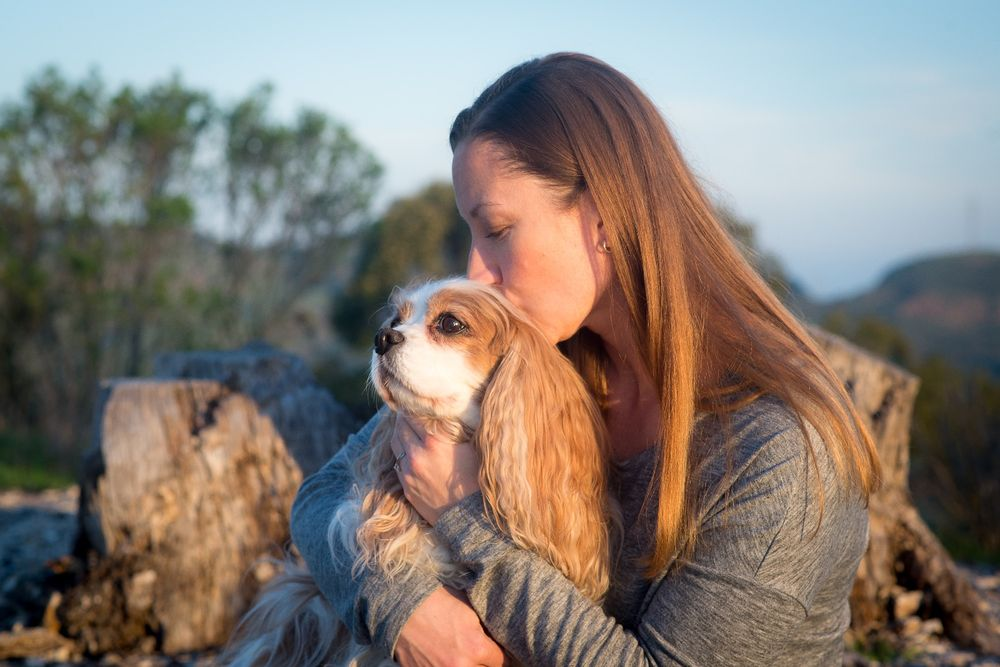 BluePearl Pet Hospice