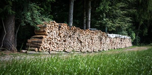 Holzverkauf Lamperswil Lokale Dienstleistung Lamperswil