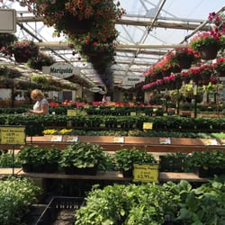 Wallish greenhouses home garden 53218 range road for Better homes and gardens greenhouse