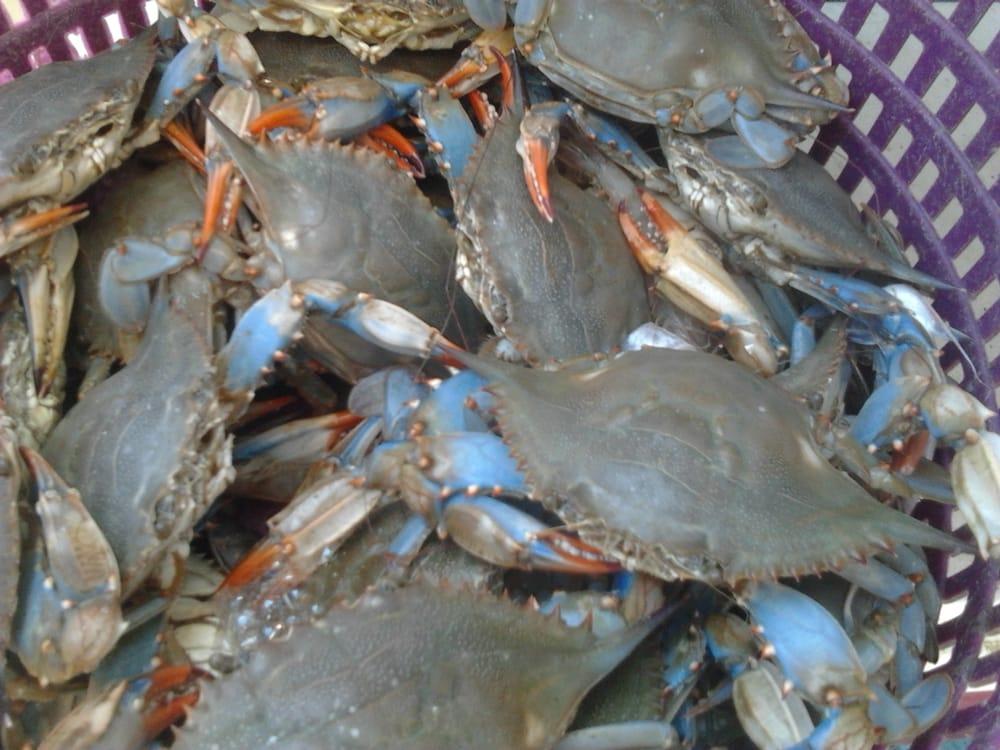 Captain Rons Shrimp and Crabs: 237 Simms Rd, Baytown, TX