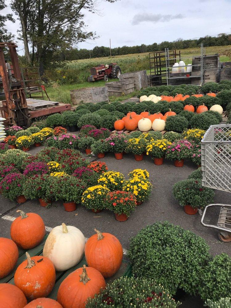 Ritter's Farm Markets: 991 Hamlin Hwy, Lake Ariel, PA