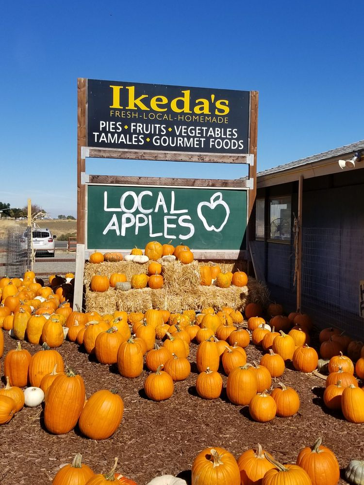 Ikedas California Country Market: 26295 Mace Blvd, Davis, CA