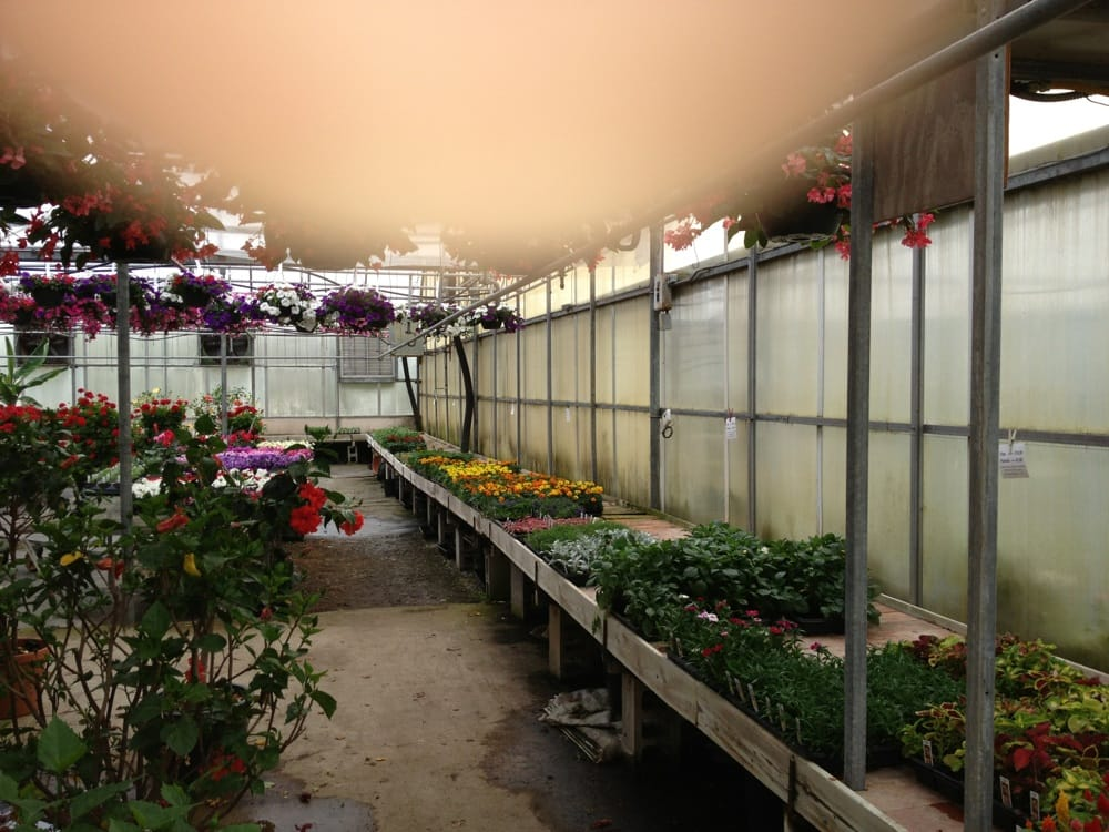 Neitzerts Greenhouse: 217 N Fiske Rd, Coldwater, MI