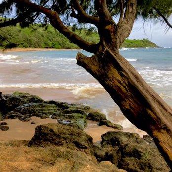 Kauai Photo Tours - 55 Photos & 86 Reviews - Tours - 4520