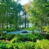 Photo Of Coastal Maine Botanical Gardens   Boothbay, ME, United States