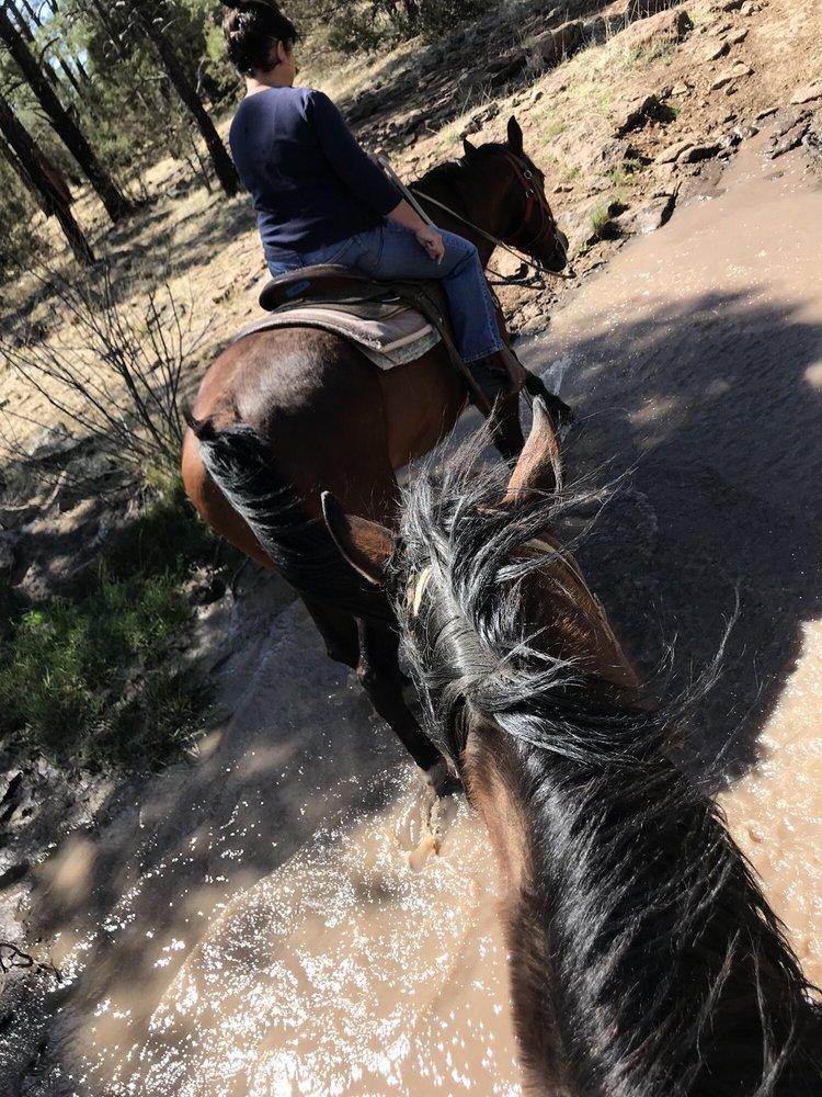 Porter Mountain Stables: 3092 Jack Rd, Lakeside, AZ