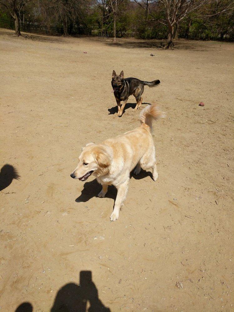 Newport Dog Park: Providence Way, Newport, KY