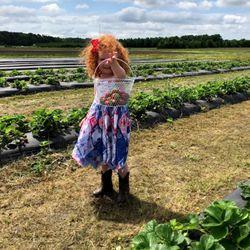 Greenbrier Farms - 68 Photos - Nurseries & Gardening - 225