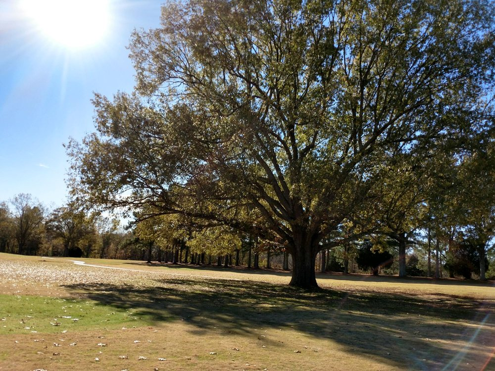 Colonial Golf Course: 400 Colonial Dr, Meridianville, AL