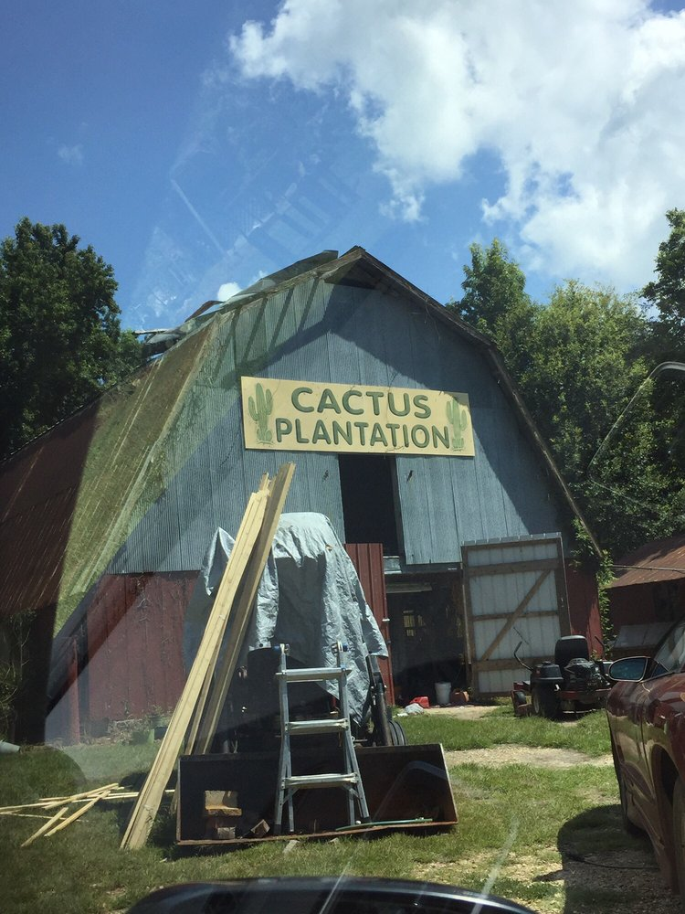 Cactus Plantation: 1088 Champion Hill Rd, Edwards, MS