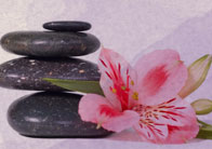 Healing Touch Francine's Skin Care: 470 Main St, Armonk, NY