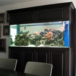 Photo Of Living Art Aquatic Design   Los Angeles, CA, United States