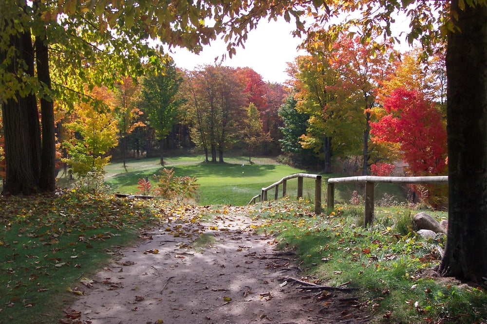 Chestnut Hills Golf Course: 7700 Glovers Lake Rd, Bear Lake, MI
