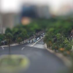 Mexico city escort reviews