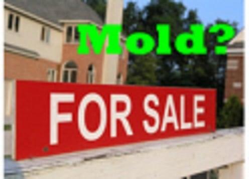 CGI Mold Testing & Inspections: 2540 Swadley St, Lakewood, CO