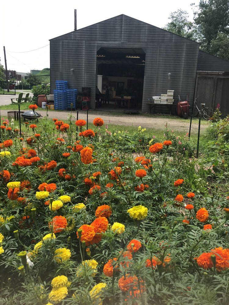 Restoration Farm: 140 Bethpage-Sweet Hollow Rd, Old Bethpage, NY