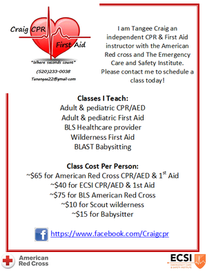 craig cpr and first aid - closed - first aid classes - green valley ...